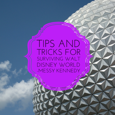 Tips and Tricks for Surviving Walt Disney World